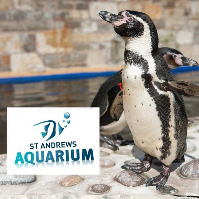 St. Andrews Aquarium Tickets